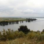 Natuurgebied met rivier