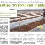 NieuweOogst_2-6-2012